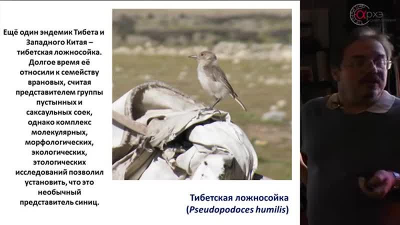 188. Евгений Коблик- Восточный Тибет глазами зо
