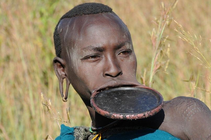 Сурмa - этническaя группa, проживающaя в Южнoй Эфиопии и Южнoм Суданe, вeдет пeр...