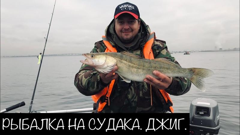 Рыбалка в ноябре. Ловля Судака на джиг.