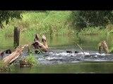 Река Судогда. Сплав на байдарке. Одиночный поход по Судогде #2