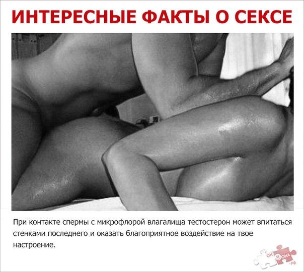 prosmotr-eroticheskogo-kino