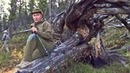 Чёрные лесорубы. Как спасти тайгу?