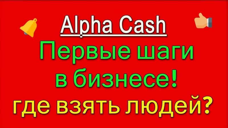 Первые шаги в бизнесе рекомендации от Alpha Cash