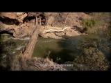 «Мои африканские приключения» (2014): Трейлер (русский язык)