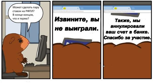 Организация РПЛ, премьер-лига Россия