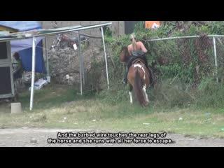 Finally Horse Took Revenge From Horny Isabella