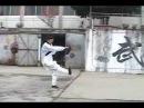 Wudang Kung Fu 伏虎拳 Wudang Fu Hu Quan
