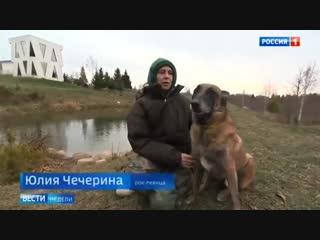 Фронтовая музыка Донбасса_ российские артисты помогают ополченцам укреплять боев