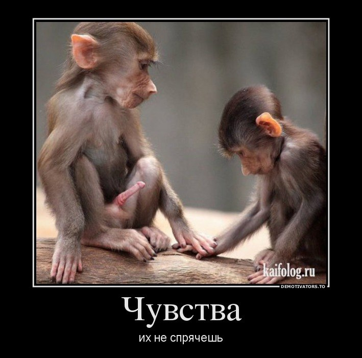 Слушать музыку сборник русский рок лучшее ничего, кроме
