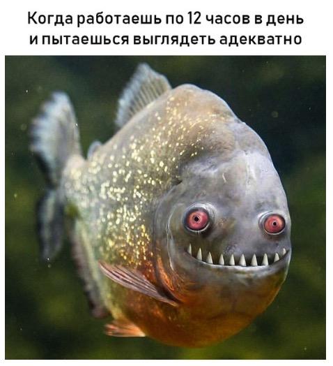 lol =)