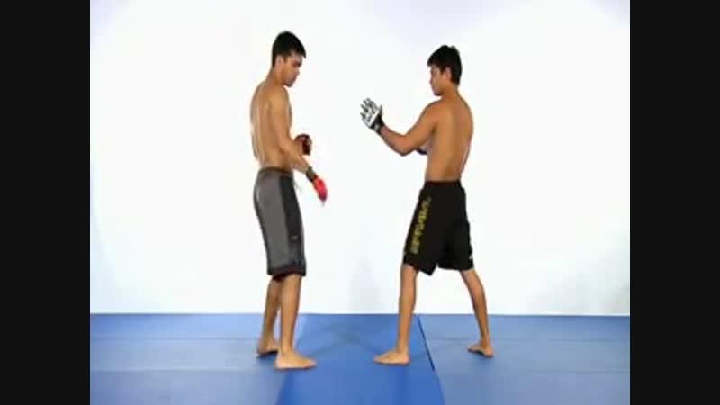 Machida Karate for MMA Volume 2