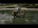 Red Dead Redemption 2 мертвый олень встал и с него сняли шкуру
