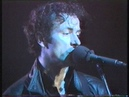 The Stranglers Live Munich Alabamahalle 14/01/85