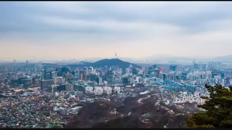 Корея законодатель трендоа