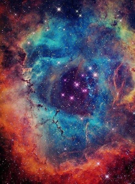 orion nebula tattoo - 443×604