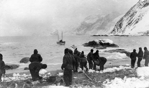 Первые покорители полюсов брали с собой килограммы кокаина