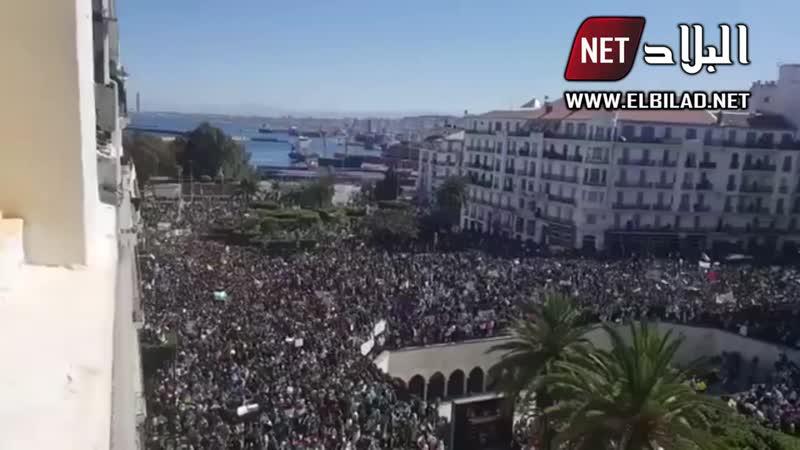 أعداد قياسية من المتظاهرين بساحة البريد المركزي با 720P HD mp4