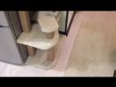 Как я строил домик для кошки своими руками. Кошка в ШОКЕ! - How To Make a Cat House