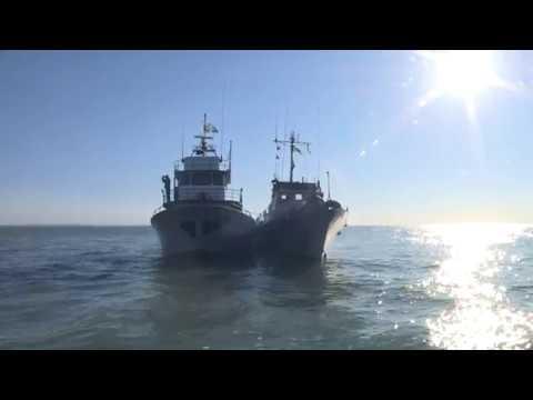 Моряки-прикордонники провели бойове залагодження
