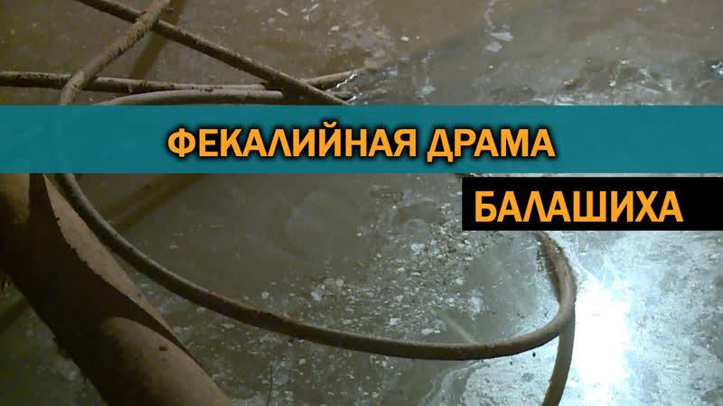 В подмосковной Балашихе жители одного из домов задыхаются от нечистот