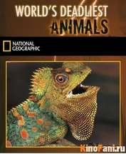 Фильм Самые опасные животные мира / Worlds Deadliest Animals / 2007