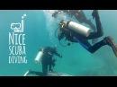 Mergulho em Guarapari Ilhas Rasas e Naufrágio Bellucia