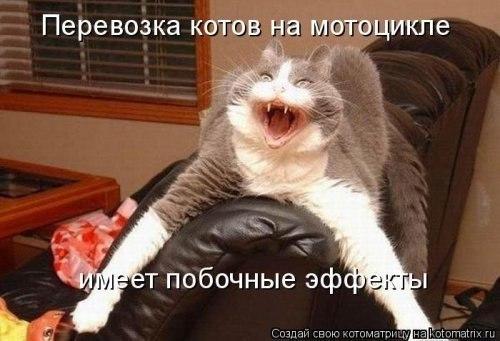 http://cs421625.userapi.com/v421625400/e69/iWMRFVdX4Uc.jpg