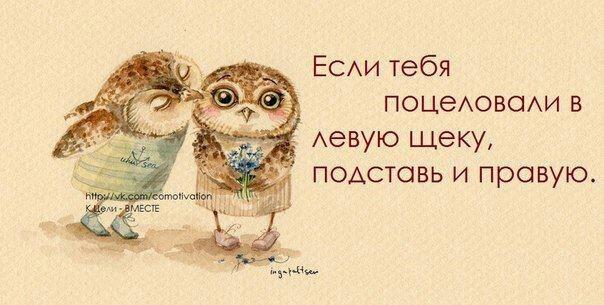 http://cs403527.vk.me/v403527682/91c2/xF_Bks4gKzM.jpg