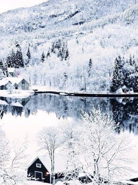 Зима для того и создана в белых тонах, чтобы начинать свою жизнь с чистого листа