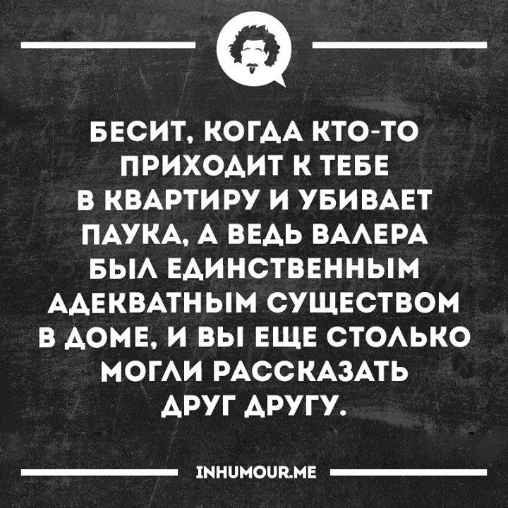 https://cs541603.vk.me/c543108/v543108554/56daa/K0-sb1JUEqM.jpg