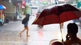 ТРОПИЧЕСКИЕ ЛИВНИ В ТАИЛАНДЕ. Когда лететь в Таиланд летом или зимой Сезон дождей в Паттайе.