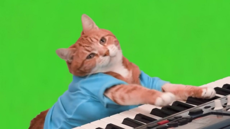Make Your Own Keyboard Cat - Green Screen (720p).mp4