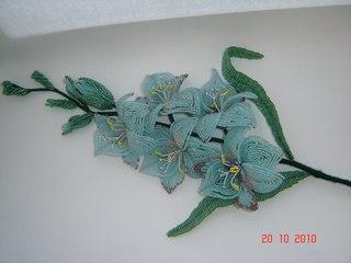 Если вы ценитель изысканных растений, то гладиолус непременно не оставит вас равнодушным, покорив вас своей...