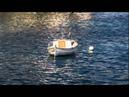 Margarideta - Catalan folk song (AROMA Guitar Quartet)