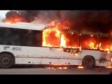 В Балашихе дотла выгорел рейсовый автобус