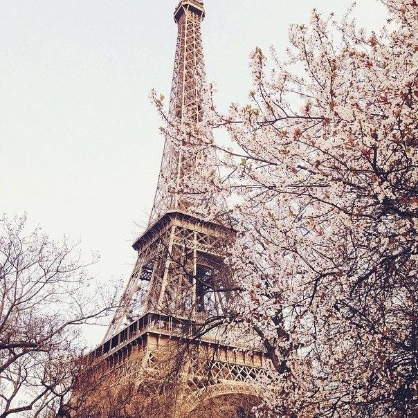 Весна в Париже !)