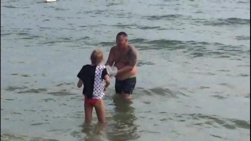 Мужик вытащил болгарскую медузу голыми руками