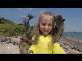 Промо видео Мадагаскар Круиз. Март. 59 секунд