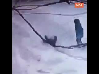 Глыба льда упала на ребёнка в Рязани - Москва 24