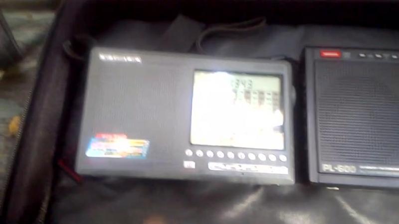 Tecsun PL 600 VS Degen DE 1103 CВ кто лучше