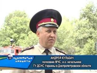 ДЮП Область 2013