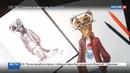 Новости на Россия 24 • Талисман Всемирного фестиваля молодежи и студентов выберут пользователи Интернета