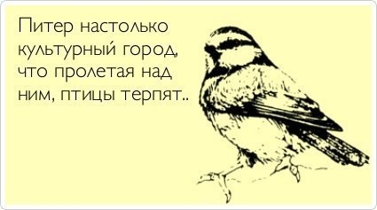 http://cs402230.userapi.com/v402230087/1fb8/sQ-qFPdVN7o.jpg