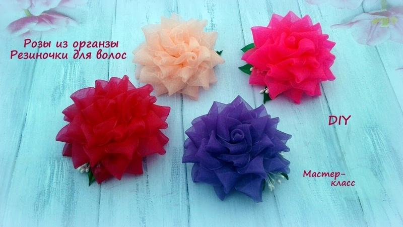 Ажурная роза из органзы. Резиночки для волос. Канзаши /МК/Hand мade/DIY/ Kanzashi