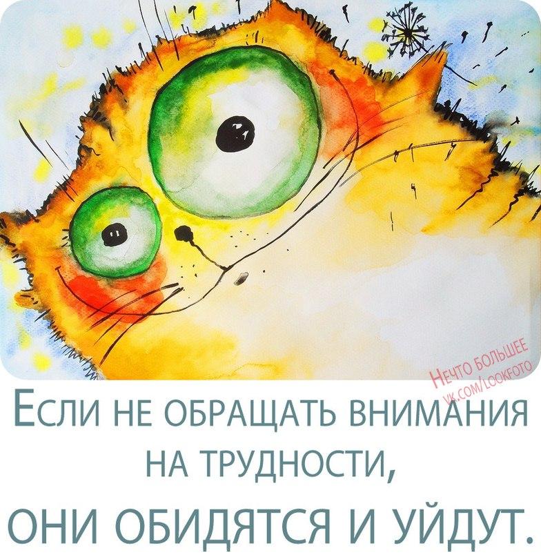 http://cs323127.userapi.com/v323127205/7ea/zk83wg9L4Tk.jpg
