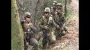 Не знают маневров : в армии США возникли проблемы с подготовкой сержантов