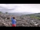 Сибирь станет пустыней Как китайцам продают русские леса