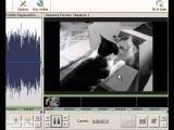 Бесплатная программа для редактирования видео.SoftFly.ru