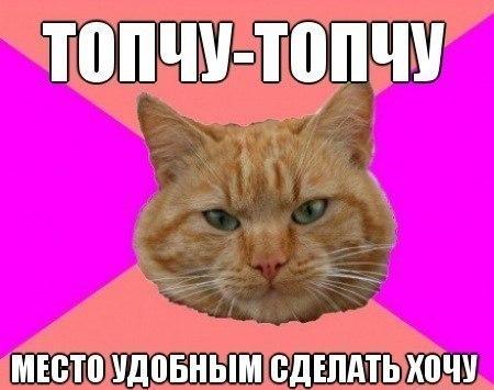 http://cs320322.vk.me/v320322306/6521/rCZv1UYxbbM.jpg