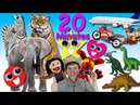 Animals, Transport, Shapes Songs | 20 Minutes | Learn English Kids